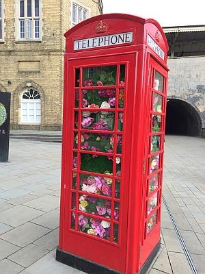 Flower decorated phone box in Bath