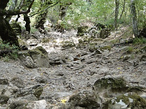 a dry river gully