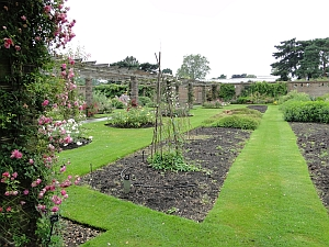 view of plant family beds